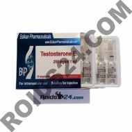 Testosterona E 250 mg/ml 1 ml 10 ampoules - Buy Testosterone Enanthate