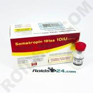 Somatropin HGH 100IU kit